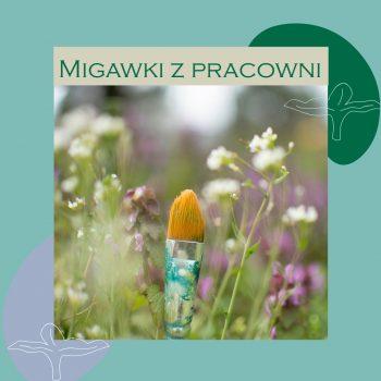 migawki2